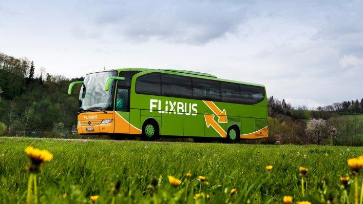 FlixBus – podsumowanie pierwszego półrocza